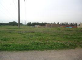 Bº Parque Matheu, P: 214 (Inter L:264)